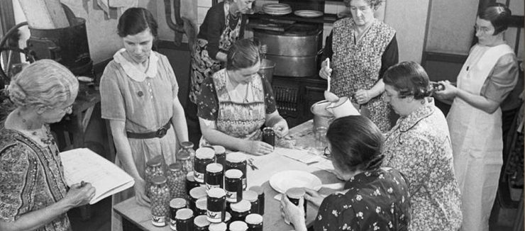 Rosehip Tea Served a Role in the Second World War
