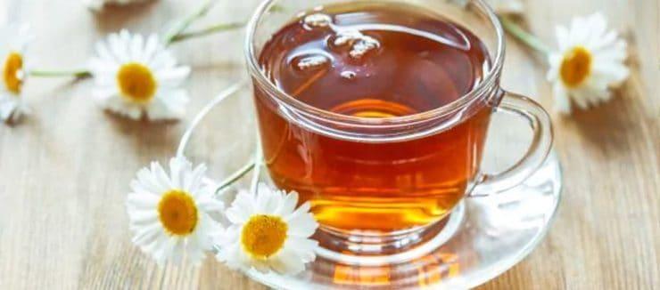 Camomile Tea During Pregnancy