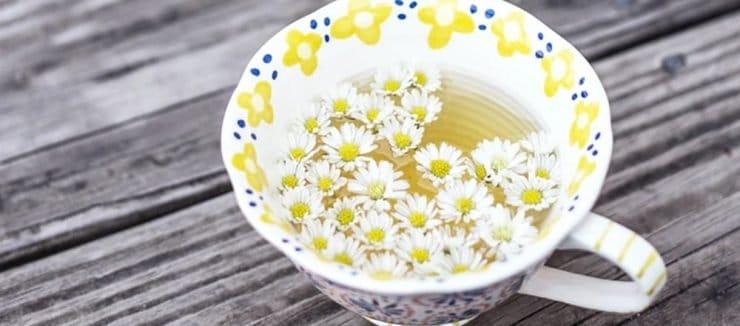Camomile Tea Helps Anxiety