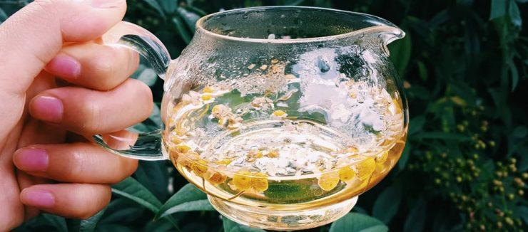 Camomile Tea Nutrition