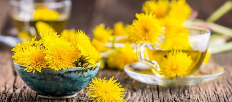 Dandelion Tea is One the Best Teas for Constipation