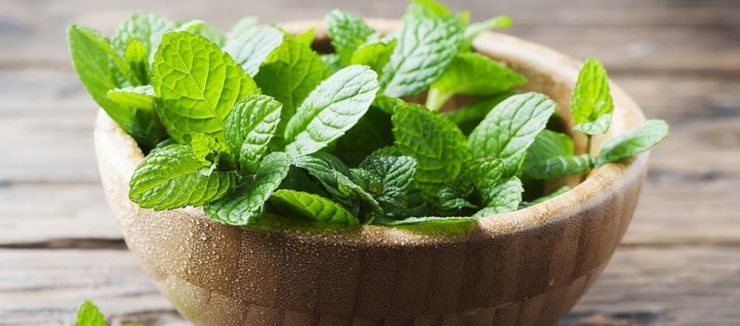 Does Peppermint Tea Cause Constipation