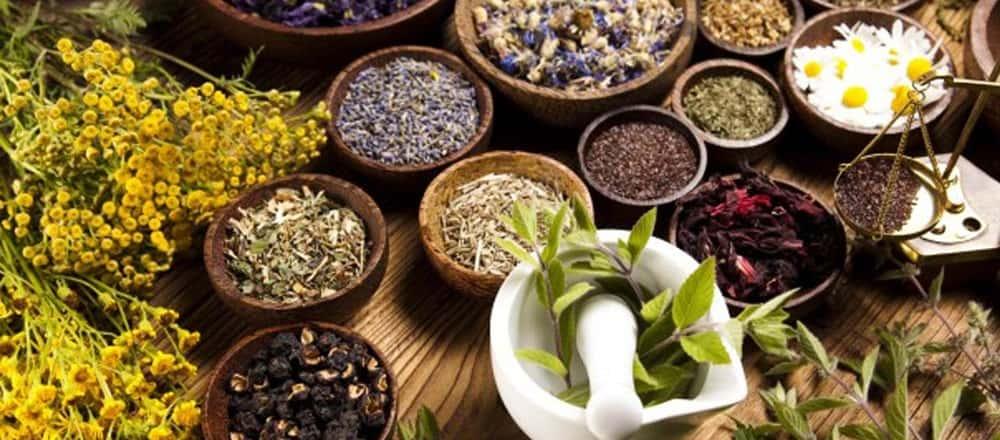 The Nine Sacred Herbs