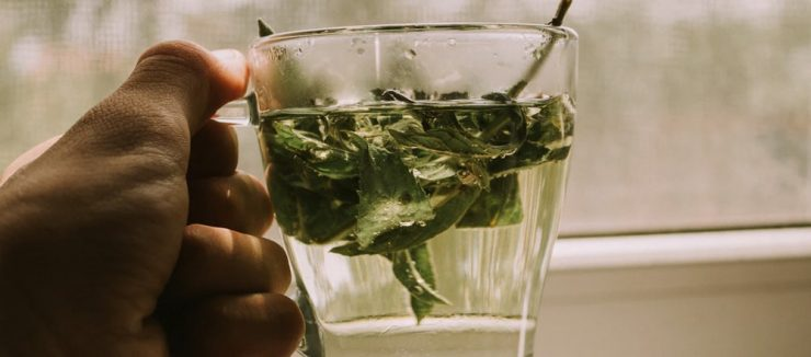 Is Moroccan Mint Tea Safe During Pregnancy?