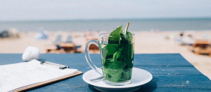 Moroccan Mint Tea Side Effects